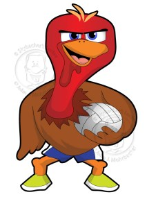 volleyball_turkey_hawk_d