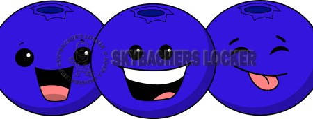 Blueberry Boyz - Skybacher's Locker