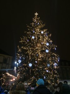 Christmas tree on Zelny Trh square 3