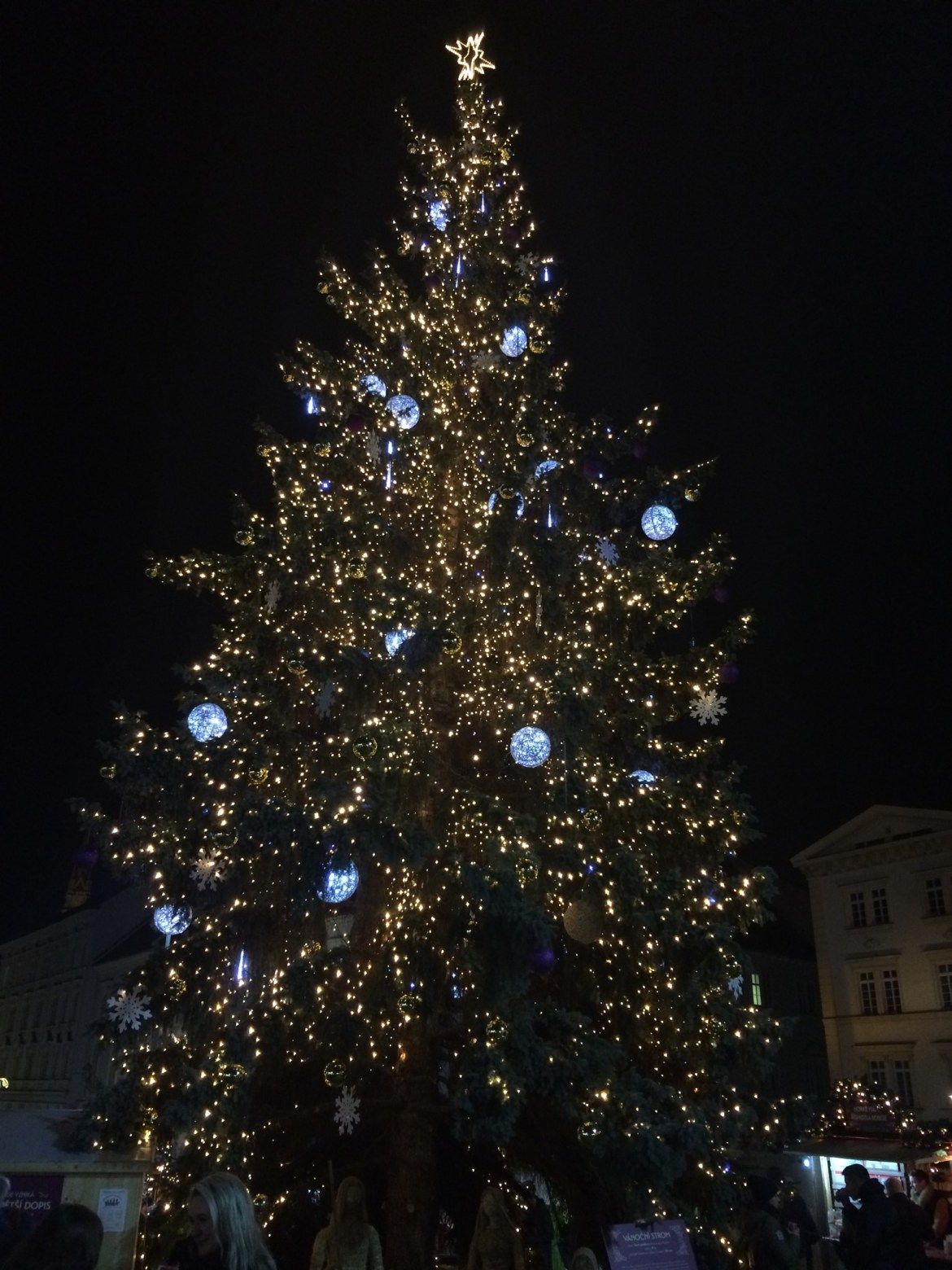 Christmas tree on Zelny Trh square 4