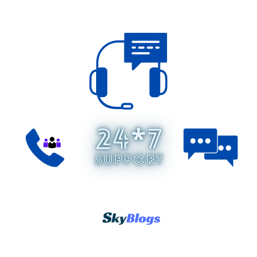 24*7 online support for seo training by skyblogs digital