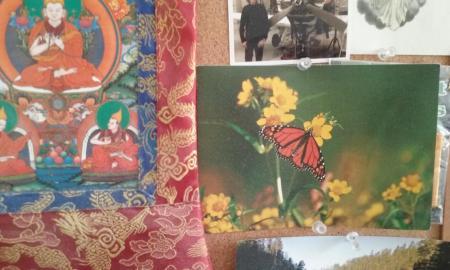 buddha flower postcard