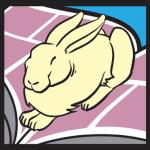 rabbit-valley-mid