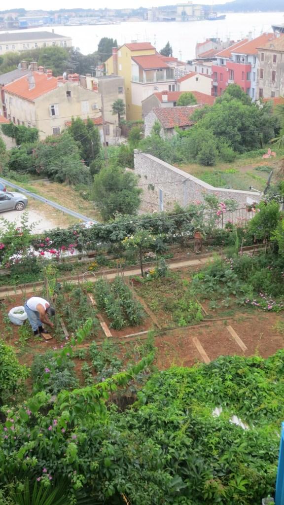 City Gardener