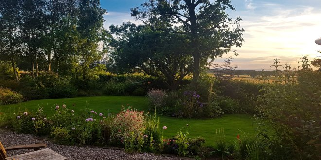 Dundee Trusted House Sitters View