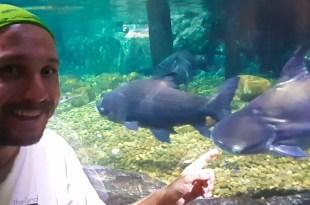 Selfie at Ocean World Bangkok