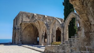 Bellapais Monastery Photo #3