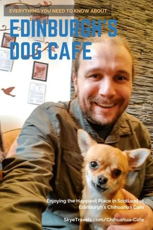 Pin - Chihuahua Cafe