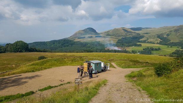 West Highland Way Animals