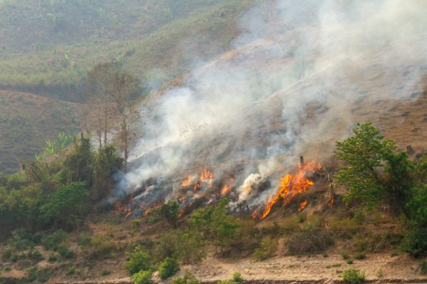 Jungle Fires Along the Mekong
