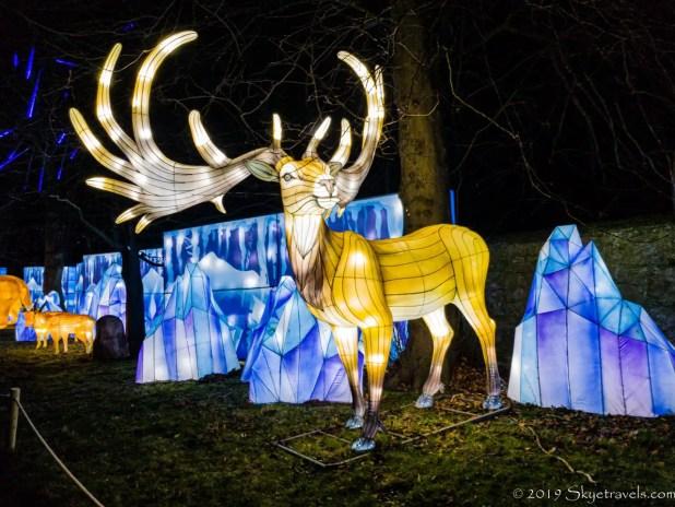 Giant Elk Lantern