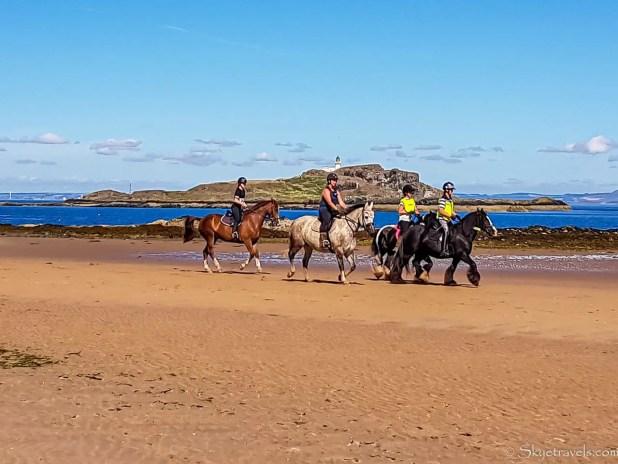 Horses on Yellowcraig Beach