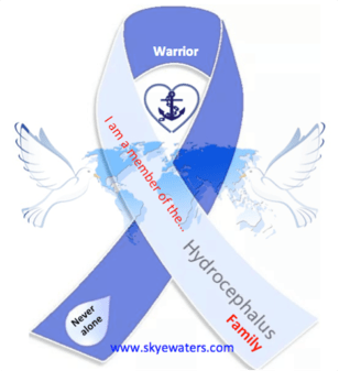 Hydrocephalus : Awareness begins with you…