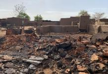 35 not 95: Mali slashes massacre death toll by a third