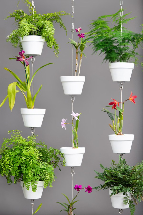 SkyPots arranged with orchids, ferns and painted clay pots.