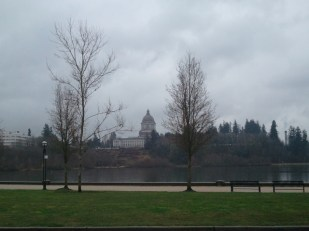 WA State Capital in the Rain