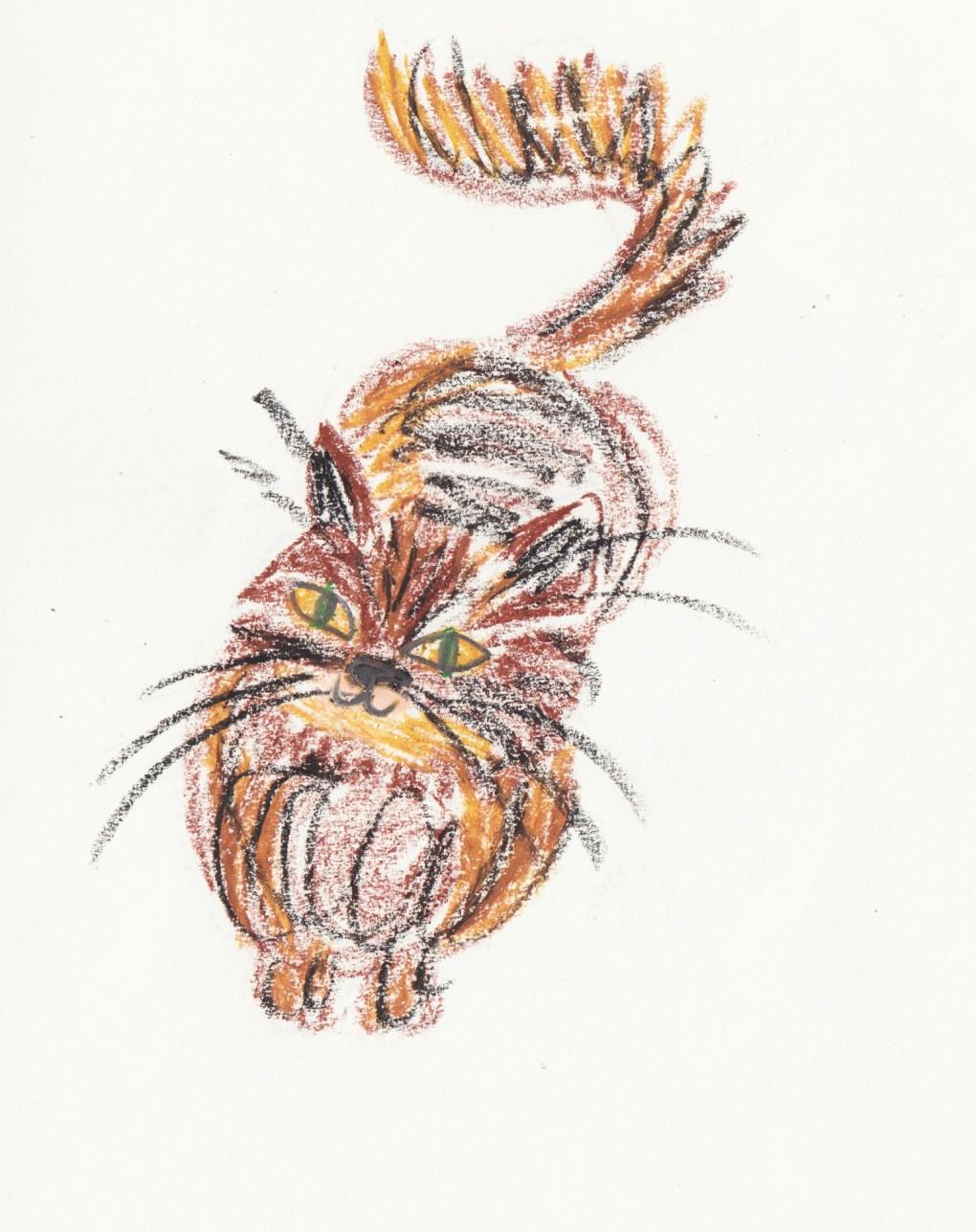 drawing-challenge-cat