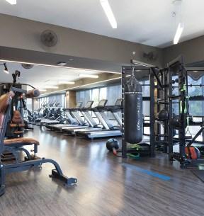 Functional Full Size Fitness Center
