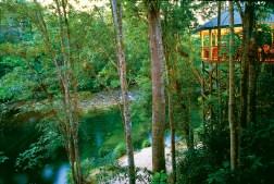 Silky Oaks Luxory Lodge
