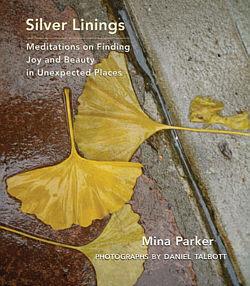 silverliningcvr