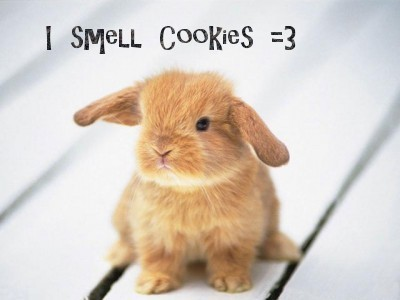 i smell cookies!