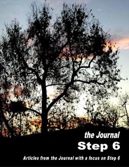Step6Focus Booklet