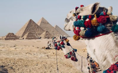 Joseph sent to Egypt