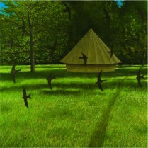 20. Swifts and Tent