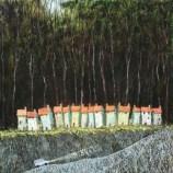 Terrace by Simon Garden 50 x 50cm £4,400
