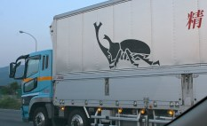 This truck has the image of a kabuto mushi (兜虫, rhinoceros beetle) on its side. These beetles can easily be found across Japan and are often kept as pets.