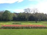 Merrion Square
