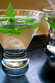 The Mint Cocktail
