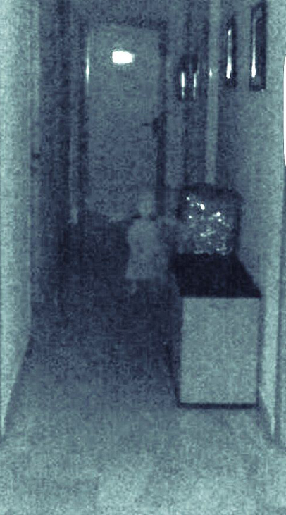 10 Creepiest Paranormal Photos Ever Taken  Slapped Ham