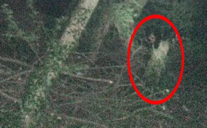 Une femme photographie un enfant aux yeux noirs dans les bois de l'est du Yorkshire, Royaume-Uni - Des enfants aux yeux noirs effrayants pris en photo