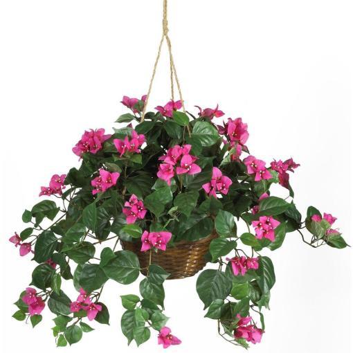 Bougainvillea Hanging Basket Silk Plant