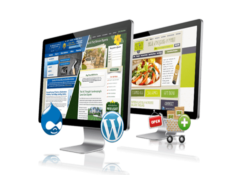 Creare si optimizare website, blog si magazin online - Slask.ro