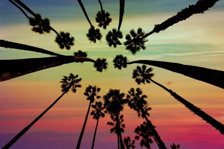 Heads Up, California Job Creators: Translate Your Employment Policies