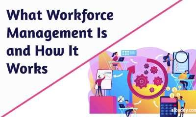 What Workforce Management