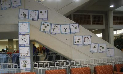 Eccles Lab School Children's Paintings on Stairs, Markosian Library II