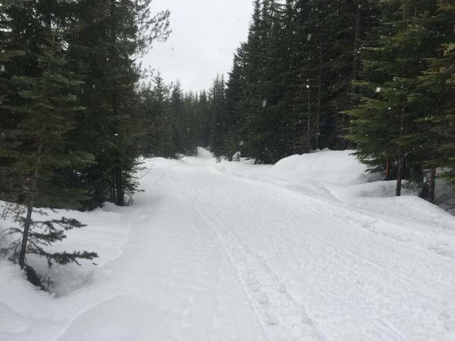 Westbench Trail on MArch 22, 2017