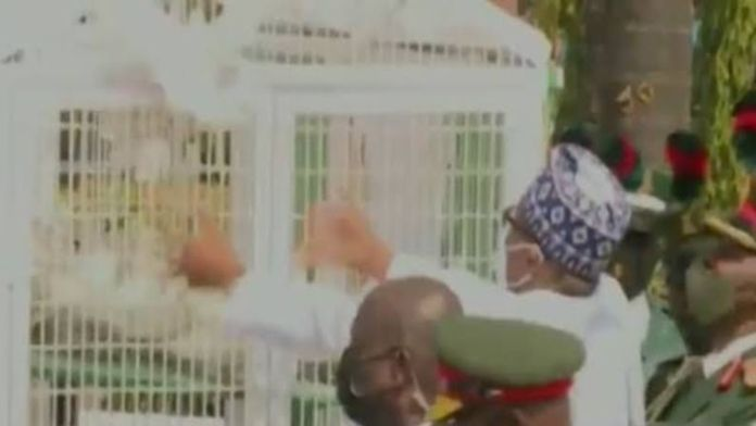 VIDEO: Just like with Jonathan in 2014, Pigeons Released By Buhari Refused To Fly At Armed Forces Remembrance