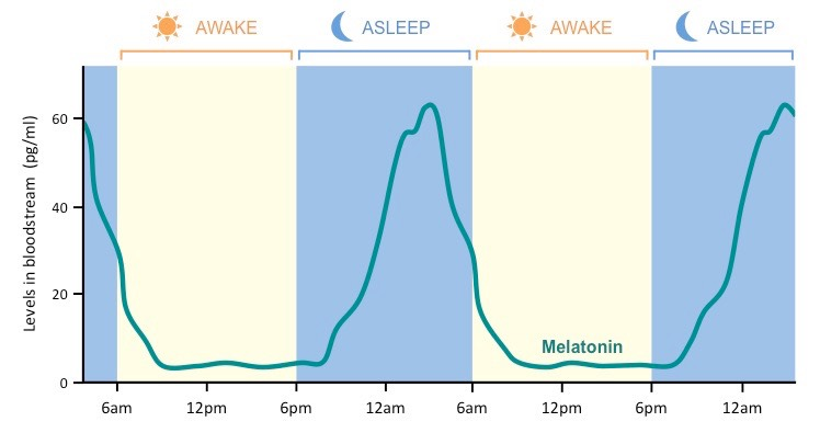How Much Melatonin Can You Take To Sleep