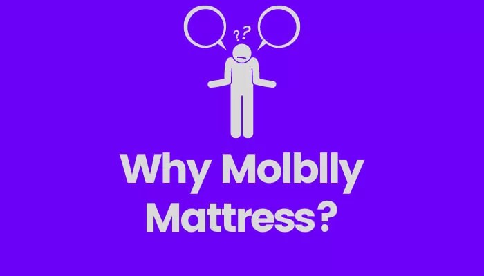 Why Molblly Mattress is a good choice