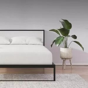sleepmaster mattresses reviews