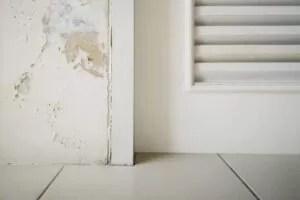 Cracks And Leaks