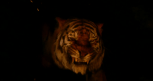 Shere Kahn, Idris Elba, Disney's The Jungle Book