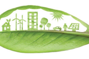 green leaf with sustainability theme