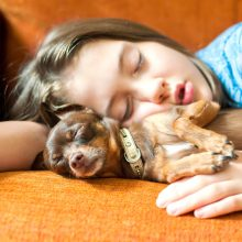 The Benefits of Sleeping With Your Dog