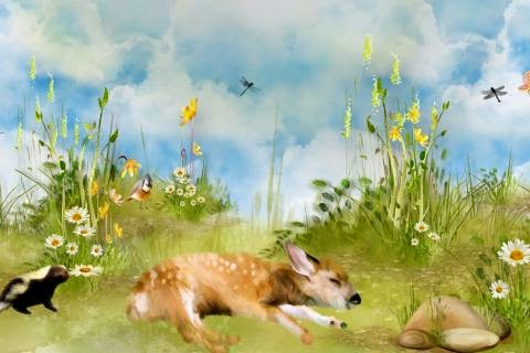 23588-sleeping-fawn-skunk-dragonflies-13611-480×320