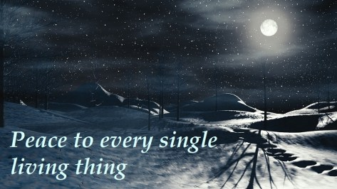 winter-moon-peace-for-shc